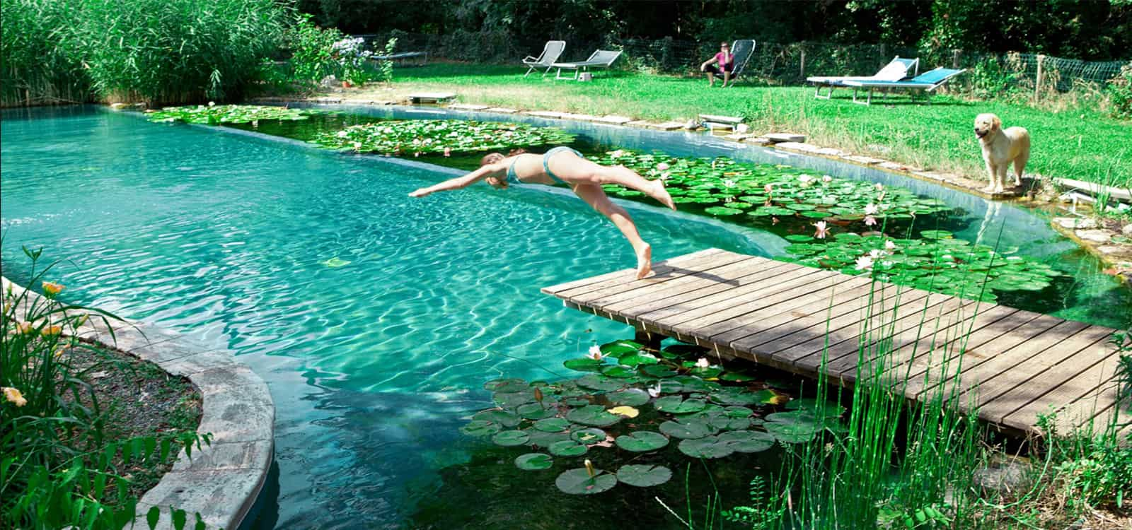 9 tips tricks for building out your diy natural swimming for Pond swimming pool